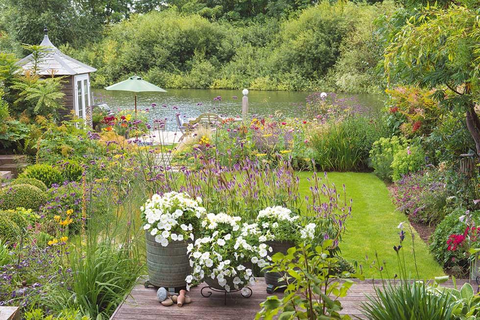 garden 10 - after
